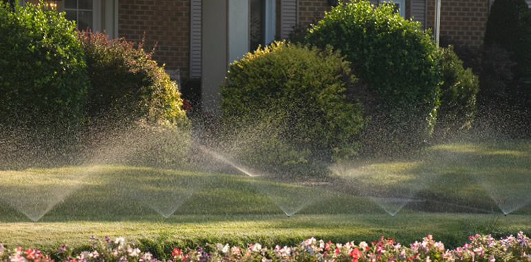 wilde irrigation